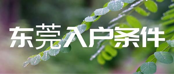 2021东莞入户条件.png